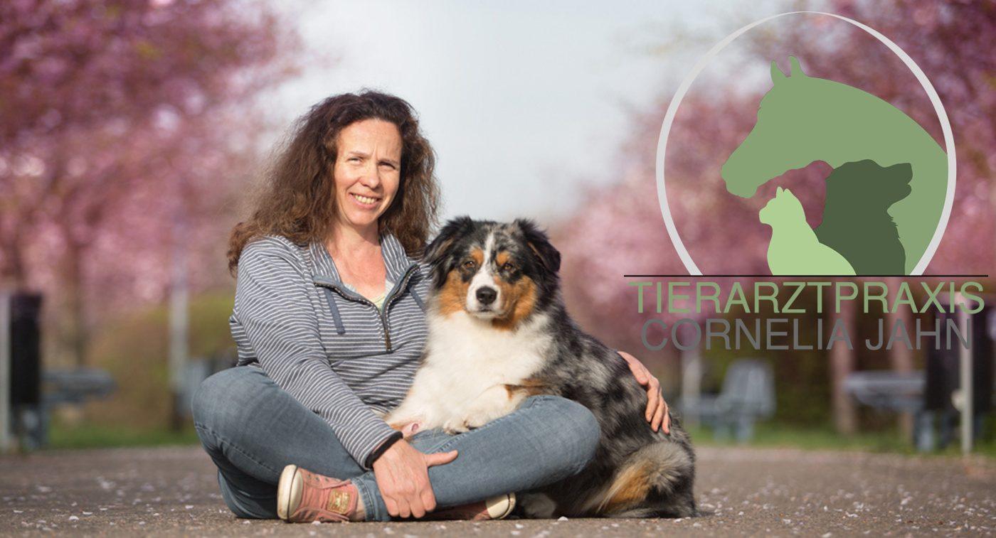 Mobile Tierärztliche Praxis mit Tätigkeitsschwerpunkt Osteopathie für Hund, Katze & Pferd Blutegeltherapie Magnetfeldtherapie
